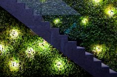 10 best green wall images on pinterest green architecture bowles and wyer stairs green wall garden lighting night shot aloadofball Gallery