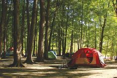 I'm not HUGE on camping, lol but maybe one day I might need these tips.>Tips for camping in the heat