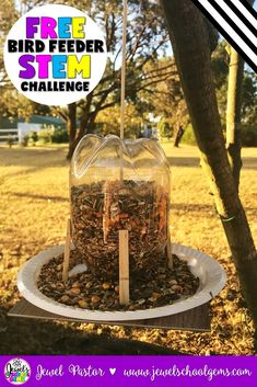 Bird Feeder STEM Challenge FREE (Spring and Earth Day STEM Activities) | This FREE Bird Feeder STEM Challenge is perfect for any season and even Earth Day! | Challenge your students to design and build a bird feeder that can be refilled easily and can dispense bird seeds on its own. You can use plastic bottles, plastic plates, cardboard, wooden clothespins, and string to engineer this bird feeder. Click to see it on TpT!