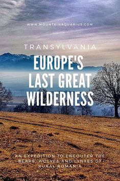 Exploring the wilderness of Transylvania in winter. An expedition to find bears, wolves and lynxes in this untouched part of rural Romania. Europe Travel Guide, Europe Destinations, Travel Guides, Travel Tips, Travel Abroad, Travel Hacks, Budget Travel, Transylvania Romania, Travel Usa