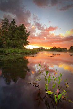 sunset reflection, Willow Lake, Prescott, Arizona