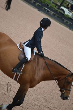 """.Hi I'm Mariel-South Florida- Equestrian. FFA. Taken 3.30.12<3  """"A horse is the projection of peoples' dreams about themselves - strong, powerful, beautiful - and it has the capability of giving us escape from our mundane existence."""""""