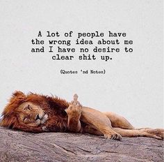 Trendy Ideas Funny Life Quotes And Sayings Motivation Wisdom Quotes, True Quotes, Words Quotes, Best Quotes, Motivational Quotes, Inspirational Quotes, Qoutes, Citation Lion, Happy Quotes