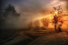 Winterland by Maurizio Fecchio
