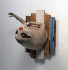 Jeffrey Sincich: Sloth