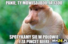 Home of Weird Pictures, Strange Facts, Bizarre News and Odd Stuff Bizarre Animals, Animals And Pets, Funny Animals, Funny Monkey Pictures, Weird Pictures, Unusual News, Bizarre News, Creature Comforts, Orangutan