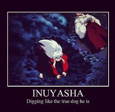 Inuyasha || anime funny