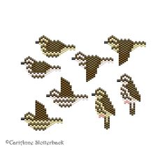 Perfect for the bird-lover, here is a 8 piece collection of my freeform peyote stitch patterns of the Louisiana & Northern Waterthrush.  The finished work for all pieces vary (but all are about 1-1.5 at the widest part) & can be used as a pendant, charm, earring, or sewn onto your favorite accessory.  ♥ Individual patterns are available upon request ($1.50) ♥  ►These are digital PATTERNS in PDF format only - NOT a finished product. The files will be directly downloadable through Etsy....