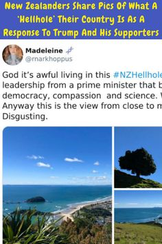 #New #Zealanders #Share #Pics #Hellhole #Country #Response #Trump #Supporters