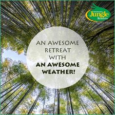 Sand Pebbles Bhitarkanika Jungle Resorts promises a great stay with a lovely weather!  #Bhitarkanika #BhitarkanikaJungleResorts #Sightseeing