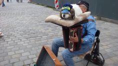 Уличный музыкант.Приколы на улице Нюрнберга