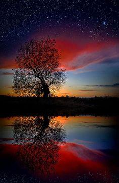 opticoverload:   Burning Stars
