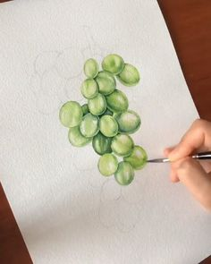 Van Gogh Watercolor, Watercolor Flowers, Watercolor Paintings, Watercolors, Grape Drawing, Architecture Drawing Sketchbooks, Fruits Drawing, Watercolor Pictures, Artist Sketchbook