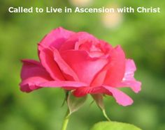 We are Called to Live with Christ in His Ascension, as Seen in Song of Songs. Read more on this topic via, www.agodman.com