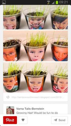 Cute way for students to learn about seeds growing