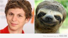 (George) Michael sloth!