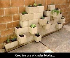 Very Beautiful And Compact Garden. Need some cooking herbs!!    ... I would paint the cinder blocks, though.