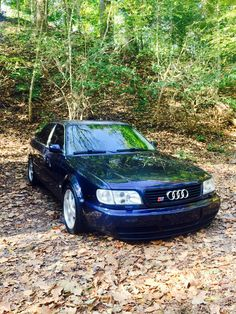 Europa Blue 1995.5 Audi Urs6