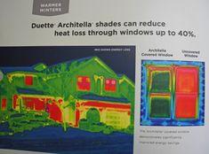 Hunter Douglas Duette Architella honeycomb shades can reduce heat loss through windows up to 40%