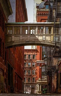 Staple St, TriBeCa, NYC Photo New York, Ny Skyline, Home Nyc, New York Architecture, Urban Setting, Chrysler Building, City That Never Sleeps, Central Park, Empire State Building