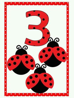 Preschool Math, Kindergarten Classroom, Classroom Decor, Number Flashcards, Math Numbers, Kids Math Worksheets, Math Activities, Baby Ladybug, Simple Math