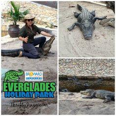 Everglades Holiday P