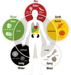One of the more interesting facets of East Asian Medicine comes to us from Five Element theory. It describes how the flavor and color of food perform different functions in the body and correspond to the five major organ systems of East Asian Medicine (which do not always correspond exactly to the Western medical understanding of the organs by the same name). Each organ system corresponds to a specific flavor and color of food. For example, the Liver corresponds to sour taste and green...