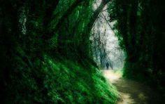 Cosa significa #sognare di perdere la strada? Smarrirsi nei #sogni Sognare di perdere la strada presenta in chiara forma metaforica le situazioni in cui il sognatore s interpretazione sogni sognare perdersi