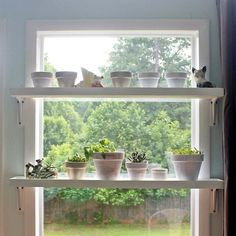 My husband and I wanted to take advantage of the massive amounts of light pouring through our sunroom windows, so we decided to build these plant shelves to han…