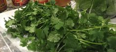 How to Wash & Store Cilantro. Thriving on Grace