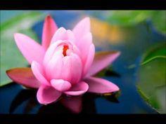 Meditace přitahování romantické lásky - YouTube