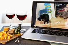 Indulge in this week's cute cat videos and some vino. Ingredients: Wine glasses – Cat videos deserve the good stuff. Appetizers – You'll definitely want something to nibble on.  Cat Knick Knacks – The best way to commemorate such an event is to give your friends a gift so they will have something to remember it by. Might we suggest cat socks?