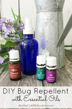 MAY 2016 TO DO SEE PRINTOUT! How To Make Your Own Bug Spray - this DIY Insect Repellent not only keeps the bugs away it's chemical free and smells good too thanks to essential oils! Essential Oil Bug Spray, Yl Essential Oils, Young Living Essential Oils, Essential Oil Blends, Mosquito Repellent Essential Oils, Insect Repellent Spray, Diy Mosquito Repellent, Fly Repellant, Do It Yourself Fashion