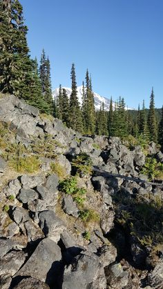 Lava Flows from Mt.St. Helens, Cascades, Washington State