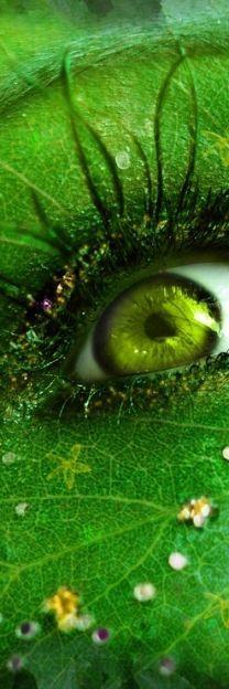 "<a class=""pintag"" href=""/explore/green"" title=""#green explore Pinterest"">#green</a>"