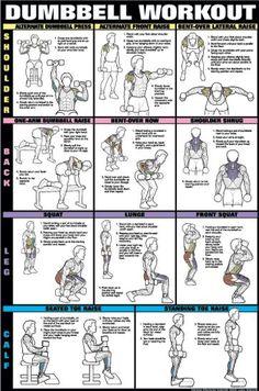 musculação halteres - Pesquisa Google