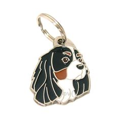 July 14, 2014 // Pet tag CAVALIER KING CHARLES spaniel, engraved