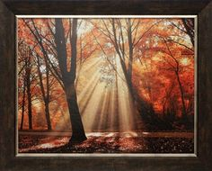 North American Art Dressed To Shine by Lars Van DeGoor Wholesale Framed Autumn Landscape Art Print