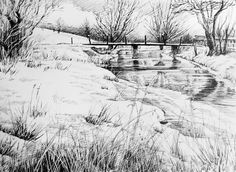 Trees in the Landscape. 2015 Pen& Ink.  Glyn Overton