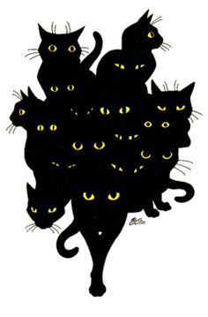 cats black art evil black magic