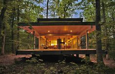 Modern home integrating real trees in the structure, West Virginia....