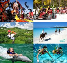 There are many activities to do in Punta Cana and the rest of the country of Dominican Republic:  Water Attractions | Adventure Tours | All Day Excursions | Cultural Excursions | Swimming with Sharks and Rays | Swimming with Dolphins | Horseback Riding