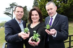 Business and Finance- Startup Gathering Cork 2015 launched