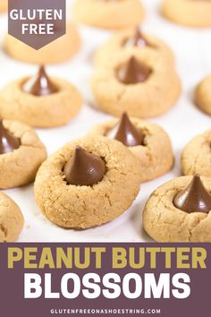 Gluten Free Christmas Cookies - Peanut Butter Blossoms - Peanut Butter Blossoms are the perfect cookies for Christmas! This easy recipe will be a favorite i - Gluten Free Christmas Cookies, Gluten Free Cookies, Gluten Free Desserts, Keto Desserts, Winter Desserts, Party Desserts, Gluten Free Peanut Butter, Best Peanut Butter, Gluten Free Baking