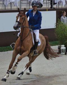 Les chevaux de sports - Flora de Mariposa - Flora de Mariposa et Pénélope Leprevost en 2014