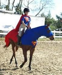 Superman horse costume