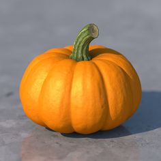 Pumpkin Model available on Turbo Squid, the world's leading provider of digital models for visualization, films, television, and games. Object Photography, Fruit Photography, Still Life Photography, Reference Photos For Artists, Photo Reference, Art Reference, Reference Images, Vegetable Painting, Vegetable Drawing