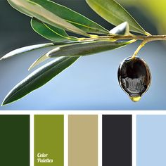 The color of green fern, pale olive, beige, light blue and black bring the sense of peace, helping to focus. This balancing range will look good in an offi.