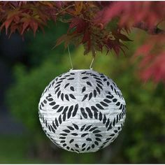 Allsop Home and Garden Soji Lantern
