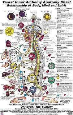 Universal Healing Tao Body Mind & Spirit Chart (E-Poster) Universal Healing Tao System E-Products Chakra Meditation, Chakra Healing, Les Chakras, Mudras, Spirit Science, Qi Gong, Reflexology, Tantra, Book Of Shadows